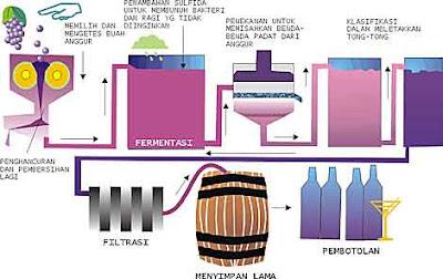 Gbr. Tahap-tahap dasar pembuatan minuman anggur merah