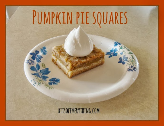 Pumpkin Pie Squares | Bits of Everything