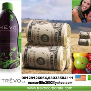 Trevo Business School