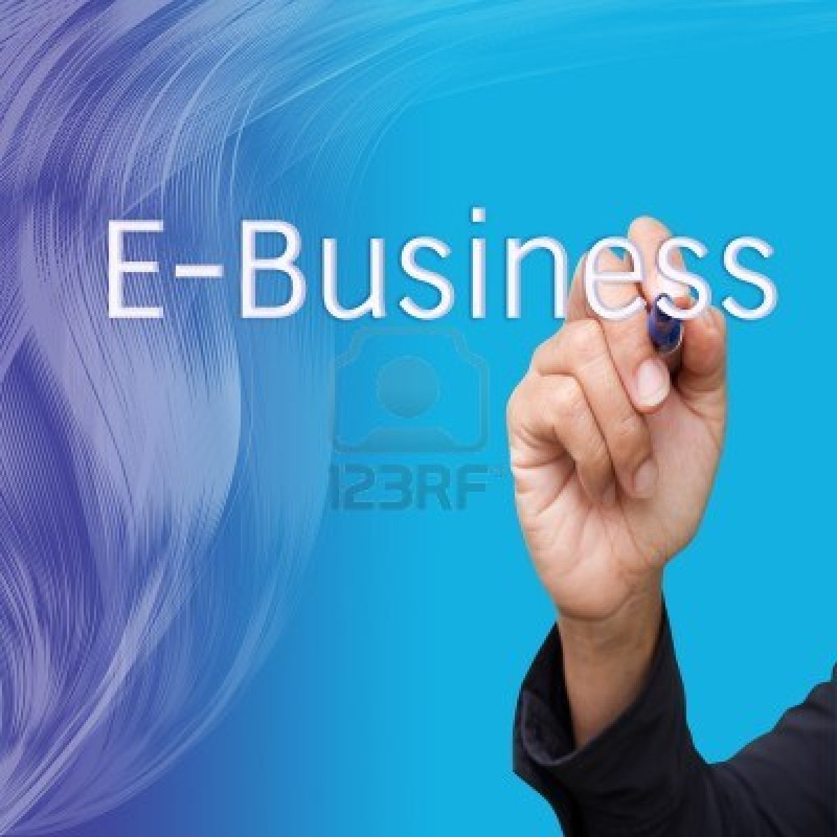 E Business Essay Ecommerce The Purposes Of E Commerce Website And  Handouts Enterprise E Business Systems Enterprise E Business Systems