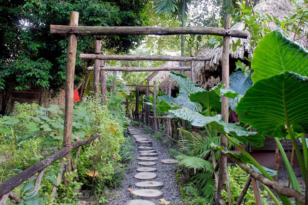 Wild Orchid Resort