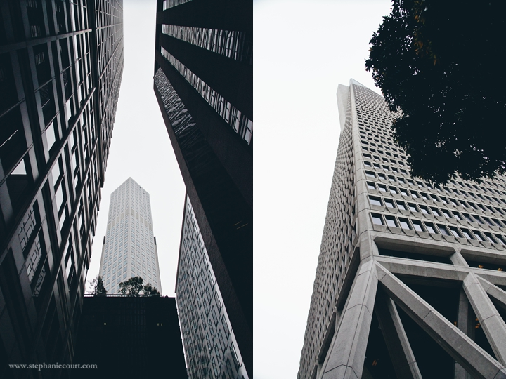 """transamerica building downtown san francisco"""