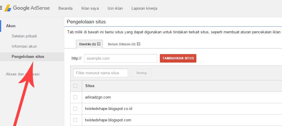 Fungsi Pin Google Adsense