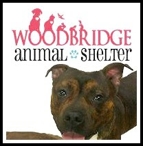 Woodbridge Animal Shelter