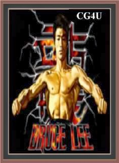 Bruce Lee Call of the Dragon Cover, Poster
