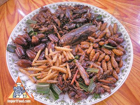 http://4.bp.blogspot.com/-gvbpw2iZch4/UOD2ka8vj1I/AAAAAAAAADQ/xxtY6Ca3tOs/s1600/insectes-comestibles.jpg