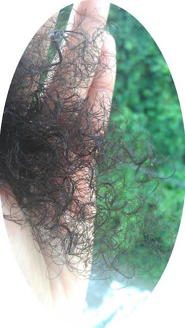 La gamme kinky-curly sur iherb