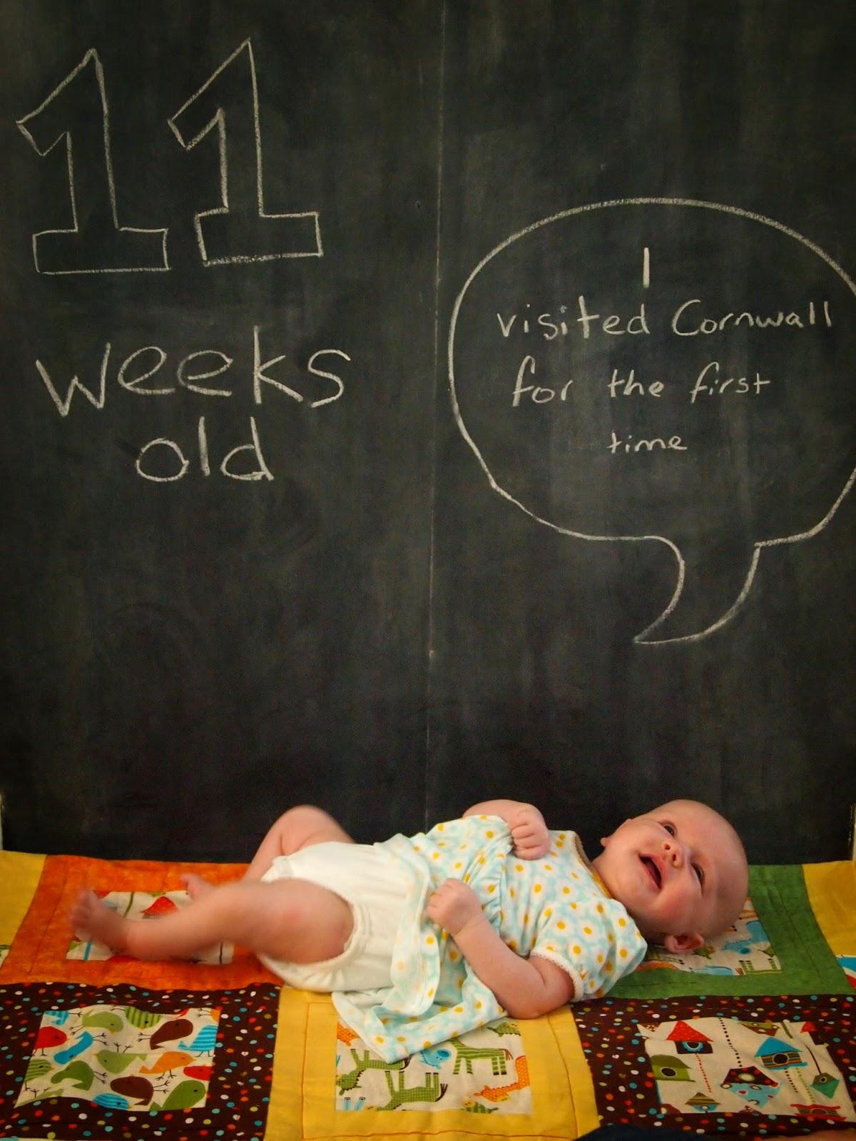 11 Weeks Old.