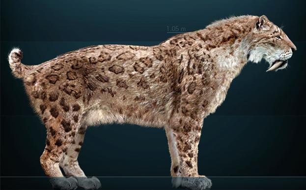 Tigre dientes de sable (Smilodon) colombia animales salvajes