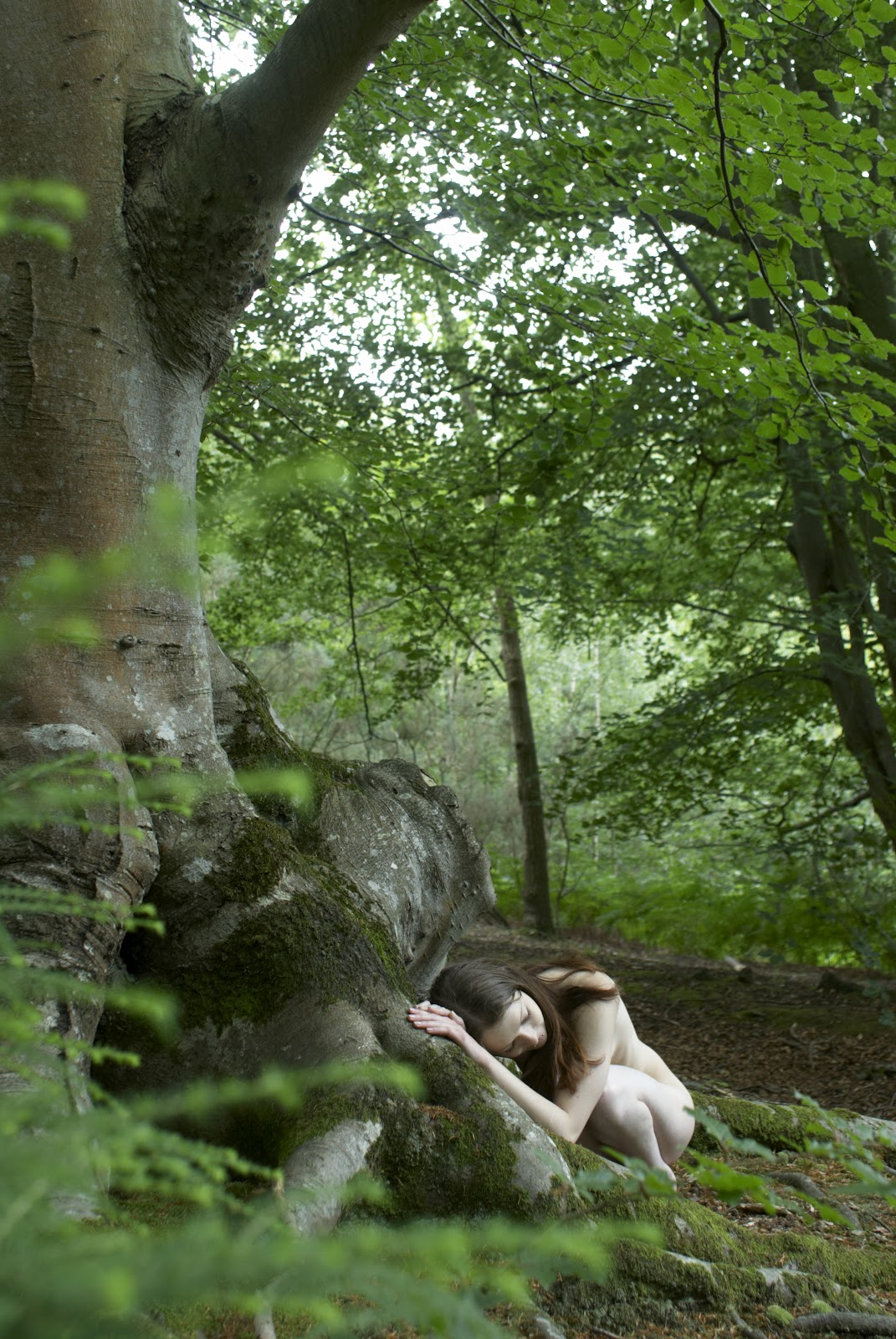 Nudecube Photo Project - Natural Landscapes