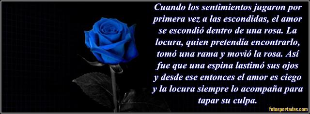 Rosas de color azul con frases de amor para portadas de facebook