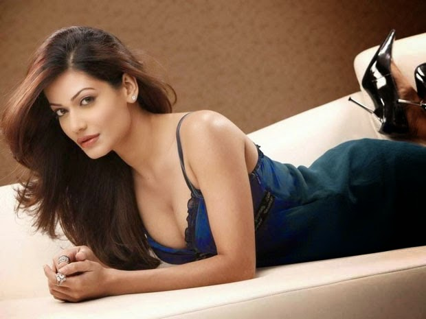 Payal Rohatgi Latest Hot HD Wallpapers Free Download