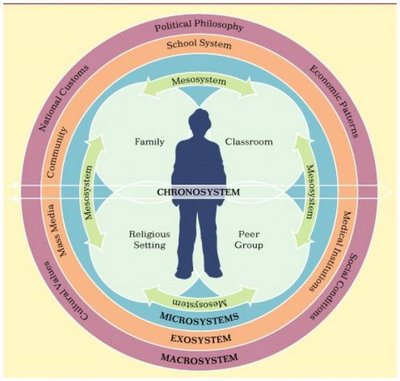 The Bioecological Model of Human Development Essay