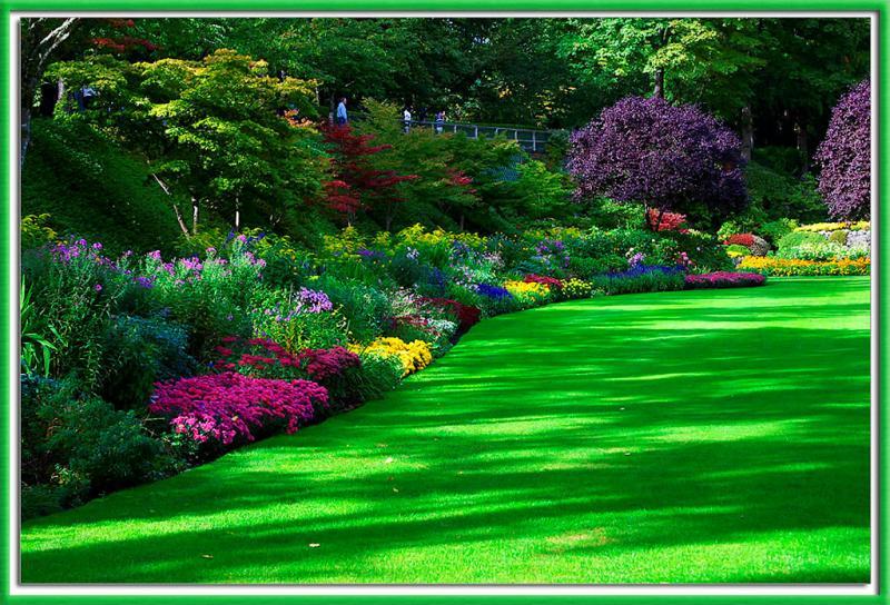 Arte y jardiner a plantas anuales y bianuales en dise o for Figuras para jardines