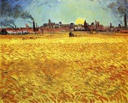 Campo de trigo com por do sol