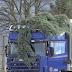 Έπεσαν δέντρα απο τον αέρα στα Γιάννενα!!! (video)