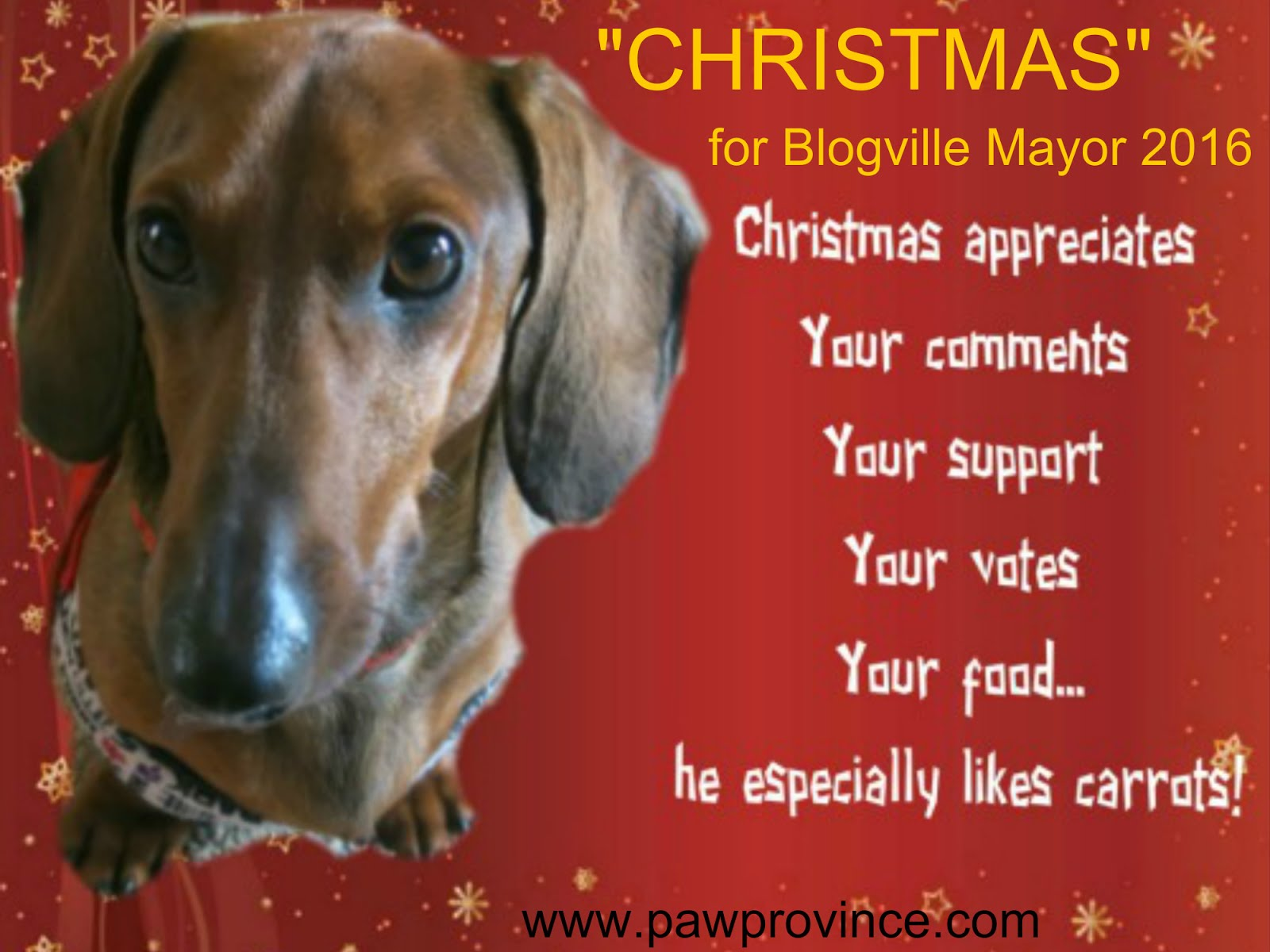 Vote for Christmas