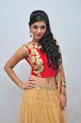 yamini bhaskar latest glam pics-thumbnail-7