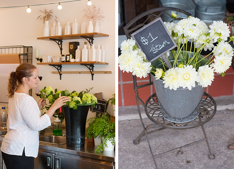 THORN & thistle, a boutique flower shop in Victoria, B.C.