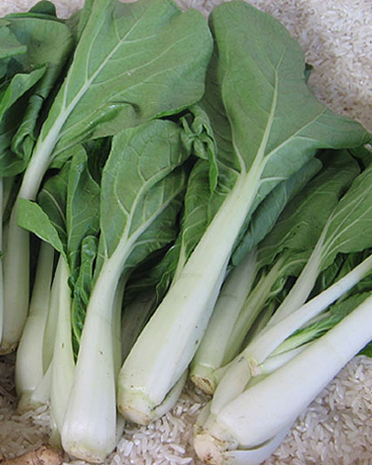Chinese Green Vegetables with Stalks