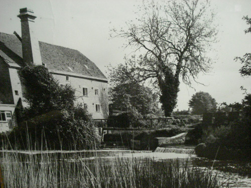 holton lee walcroft mill kingcombe this is the end