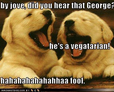 Funny animal jokes clean - photo#7
