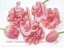 ... TANDA DIKABULKANNYA DOA KITA OLEH ALLAH ...