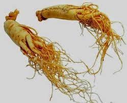 perawatan kulit natural alami ginseng sabun natural