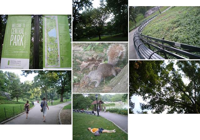 Central Park, New York, 2013
