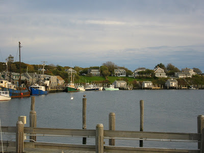 Martha's Vineyard Houses
