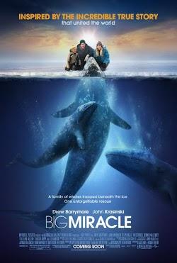 Phép Màu - Big Miracle (2012) Poster