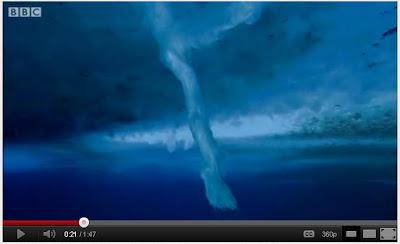 南極海底 死亡冰柱