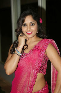 Actress Madhavi Latha Pictures in Pink Saree at Mosagallaku Mosagadu Audio Release Function  14.JPG
