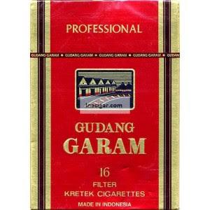 Gudang Garam Professional 16