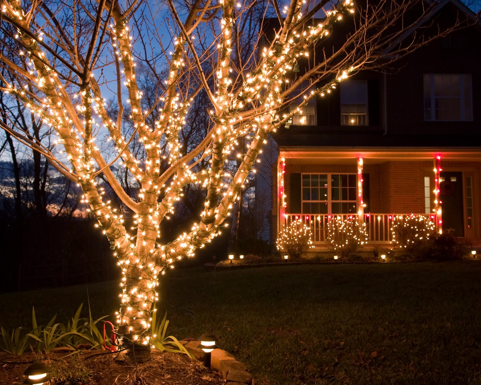 Best outdoor christmas lights local christmas activities outside 100 best outdoor christmas decorations led light design best aloadofball Image collections