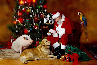 Imágenes de Navidad con Santa Claus y animalitos junto al pino