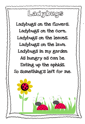 the very busy kindergarten ladybug poem freebie