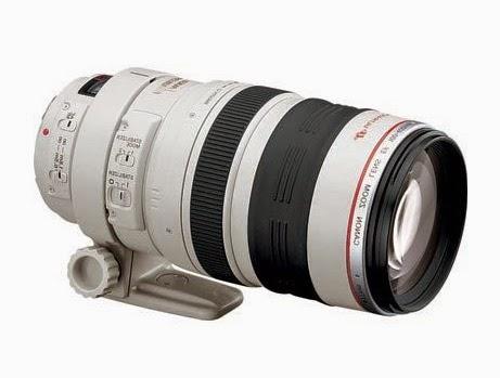 greenham birding canon 100 400 l is lens with extender. Black Bedroom Furniture Sets. Home Design Ideas