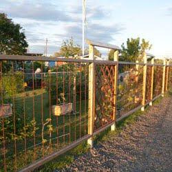 varken häck eller staket