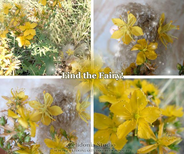 Hypericum Fairy - La Fatina dell'Iperico - Celidonia Studio - Daniela Messina