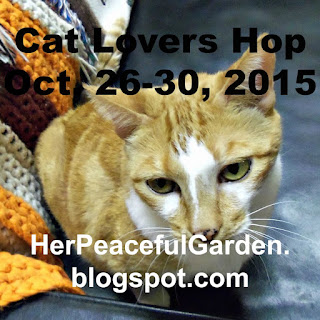 http://herpeacefulgarden.blogspot.com.au/2015/10/winner-and-biggggggggg-announcement.html