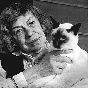 patricia highsmith, spider