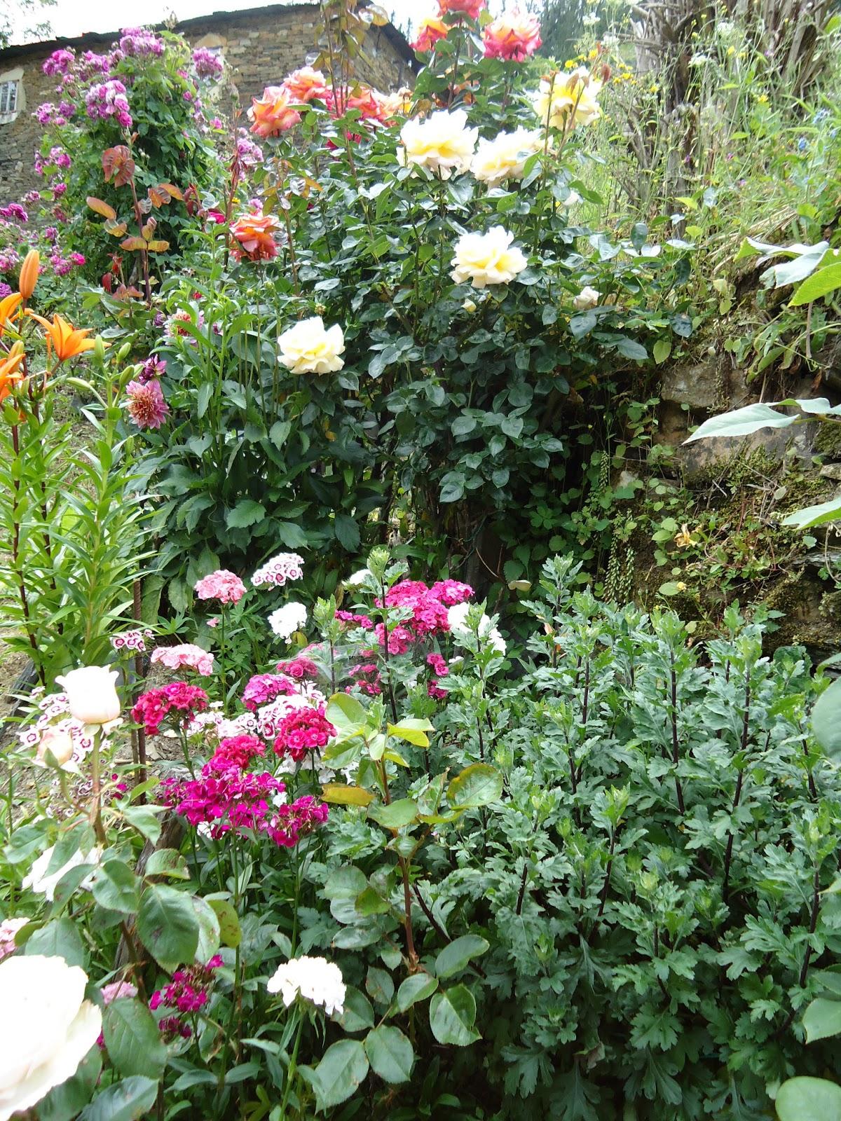La biosfera de lola el jard n de lola - El jardin de lola ...