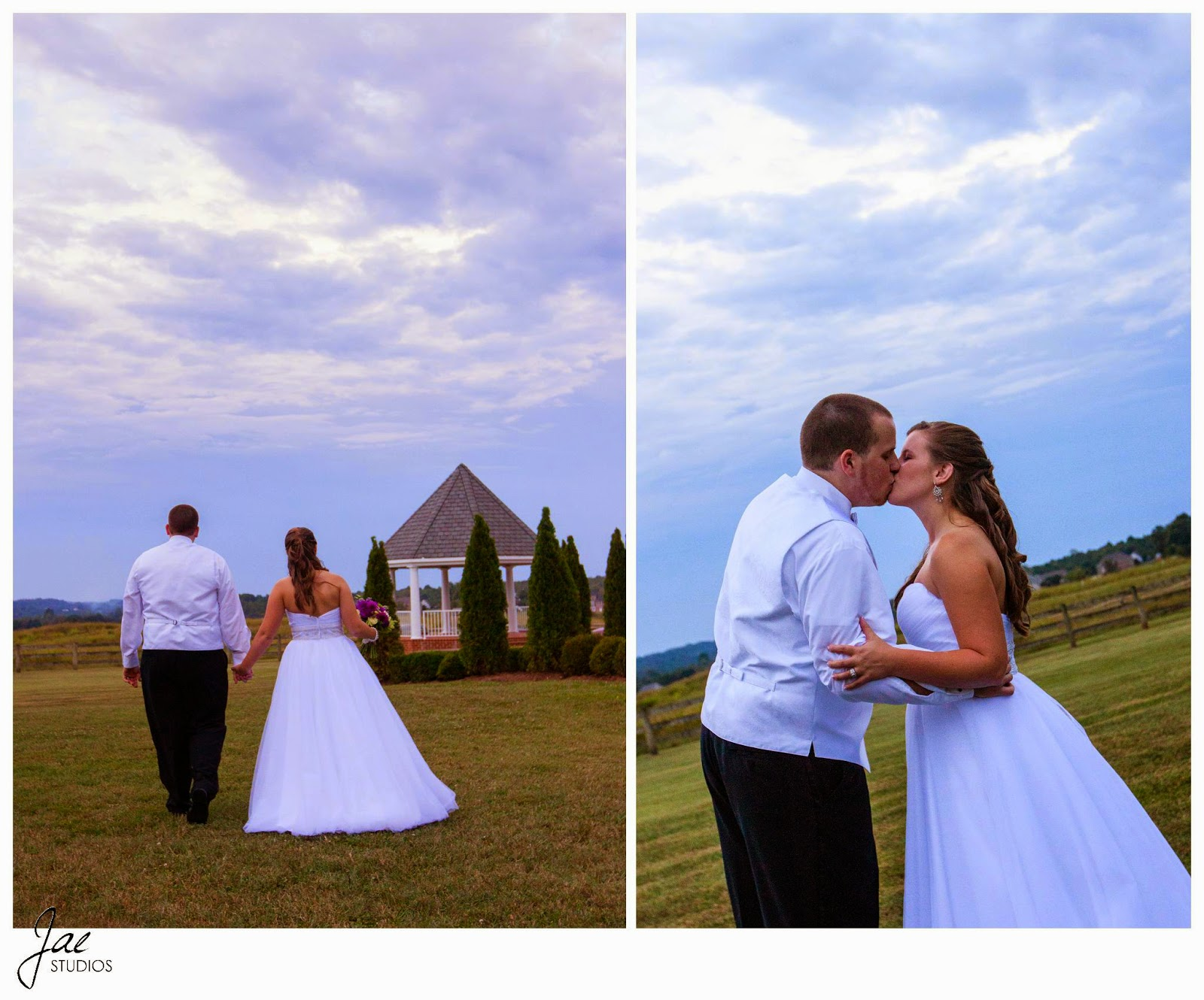 Jonathan and Julie, Bird cage, West Manor Estate, Wedding, Lynchburg, Virginia, Jae Studios, kissing, sky, grass, walking, wedding dress, tuxedo, bride, groom, holding hands