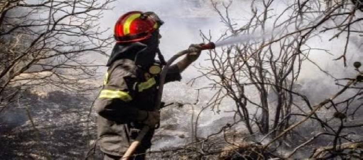 Κατά 15% λιγότερες οι φετινές πυρκαγιές του καλοκαιριού