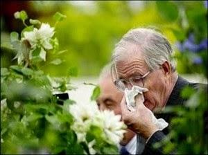 Thực phẩm chức năng hỗ trợ phòng tránh bệnh tai mũi họng