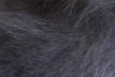 Fotografia di dettaglio del pelo di un gatto grigio