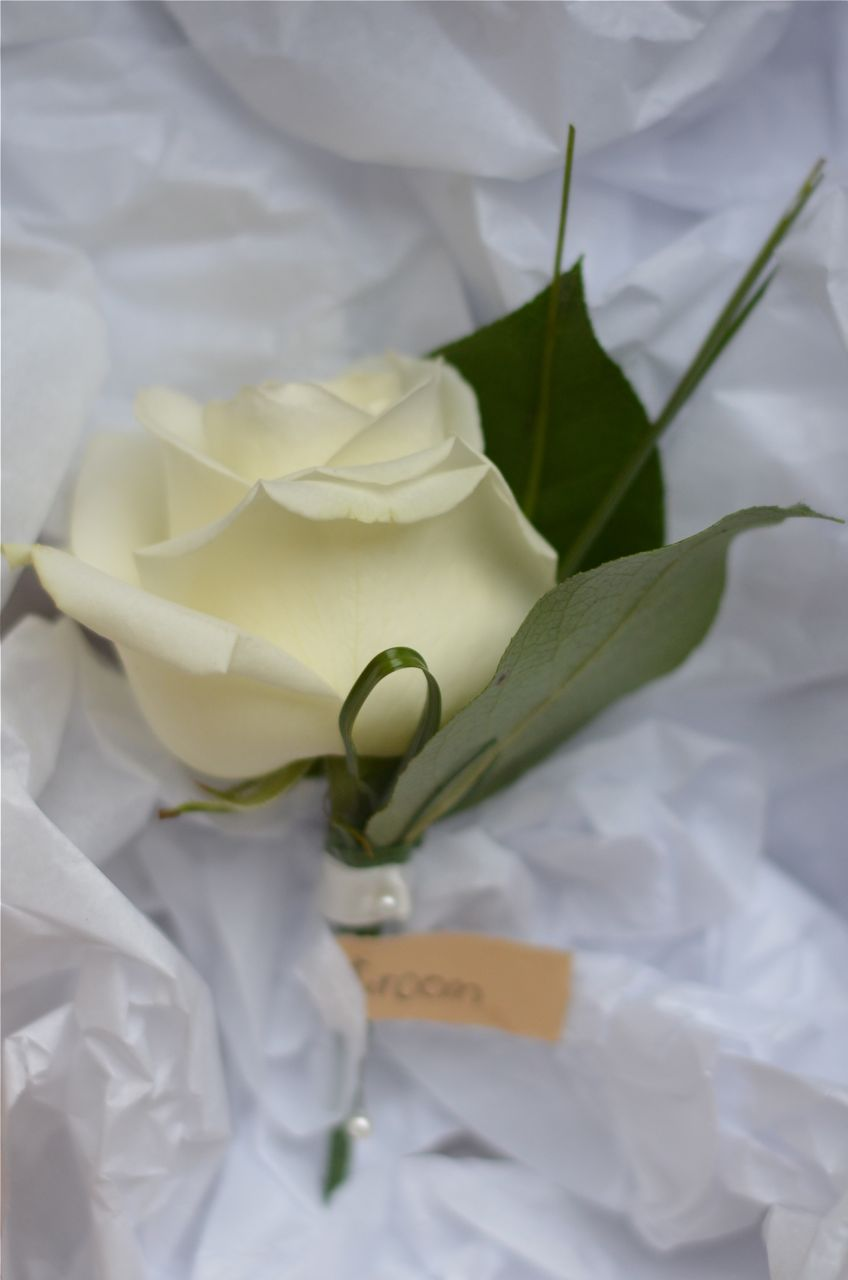 wedding flowers blog 2013 modern buttonhole of ivory rose loops and spires of grass and a band of ivory ribbon for the groom
