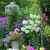 Summer Garden Favorites