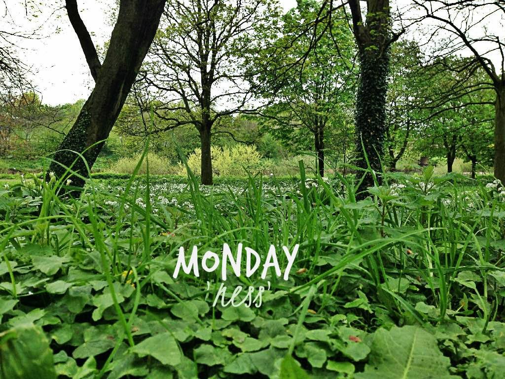 Monday 'ness'
